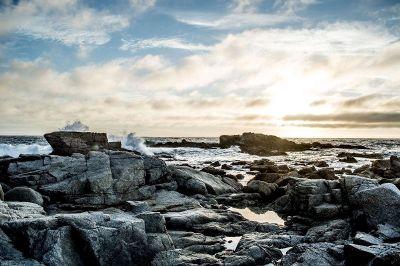 sea shore with many rocks