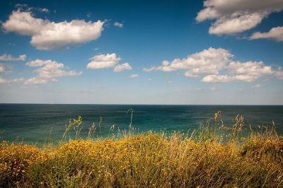 blue skies by the ocean or lake