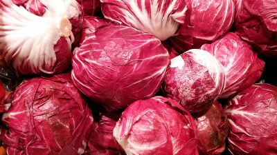 red colour cabbage