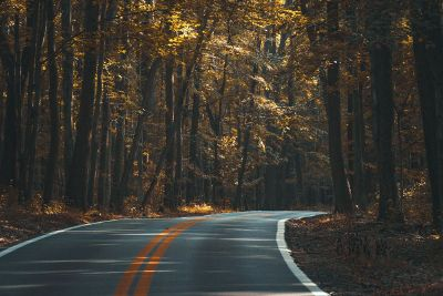 fall roadtrip