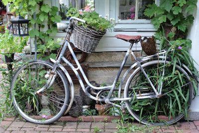 bike parked next to garden