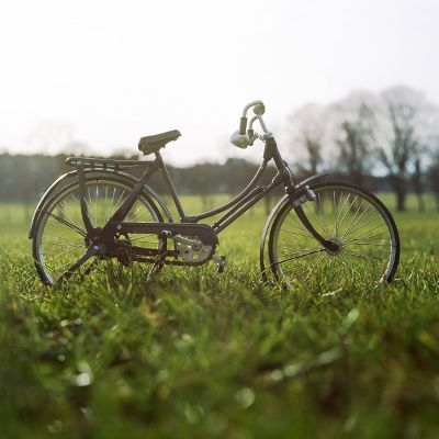 bike in the grass