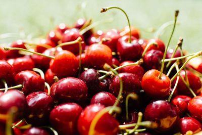 red cherries on stem