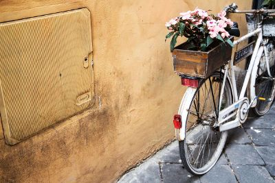 white bike with flowers against wall