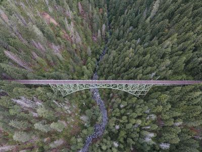 aerial of bridge and forest