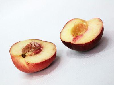 halved peach