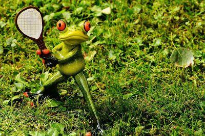 frog playing tennis