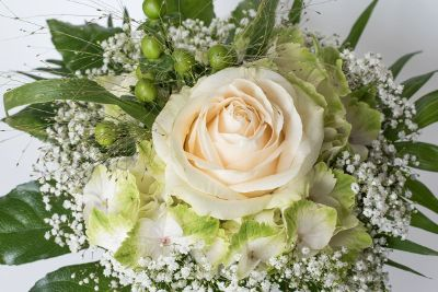 cream rose in flower arrangement