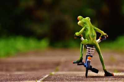 frog on tiny bicycle with basket