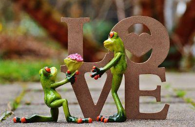 frog engagement