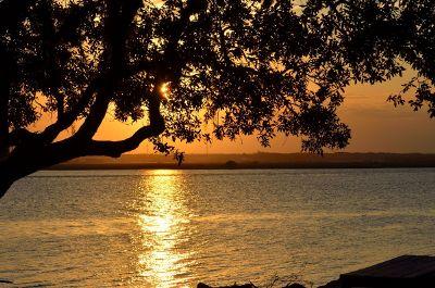 serene view of lake
