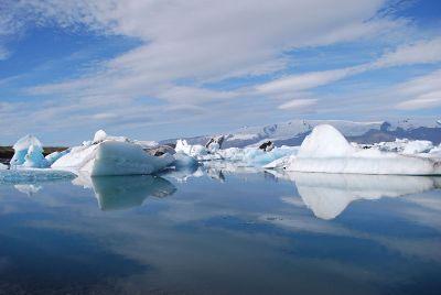 icebergs in a sea