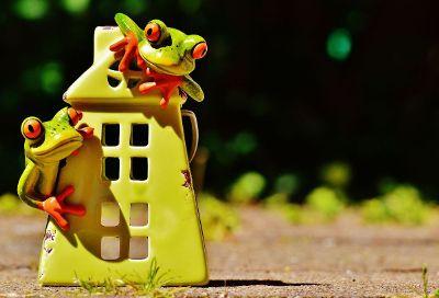 love house
