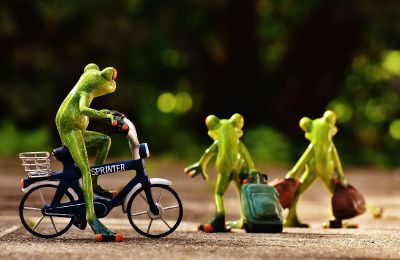 toy frog family