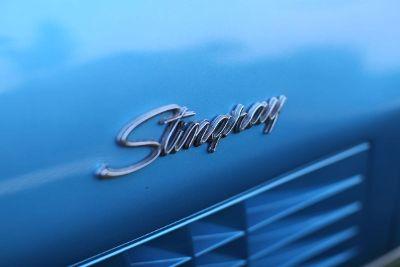 blue stingray emblem