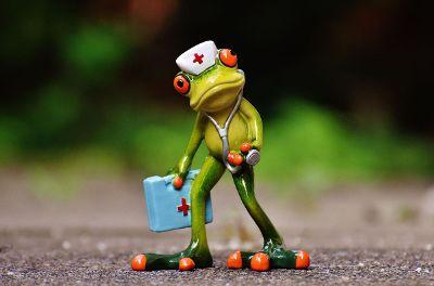 toy frog nurse