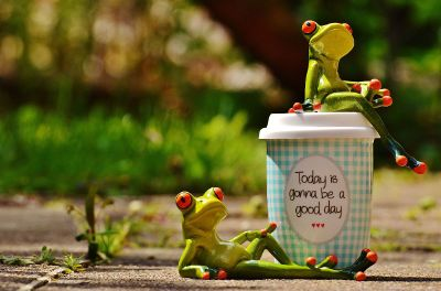 optimistic frogs