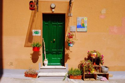 bright green door in a yellow wall with potted plants
