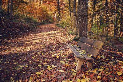 off the beaten path in fall