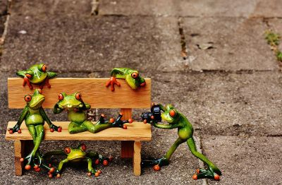 frog and friends