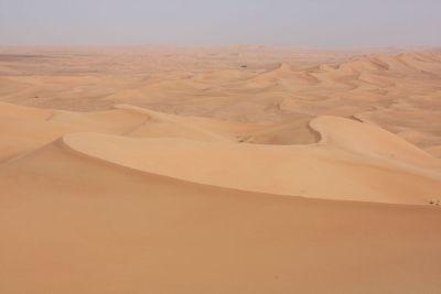 desert on sunny day