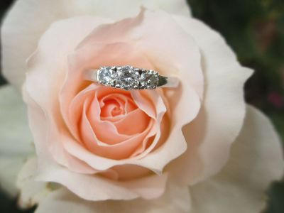ring on a rose flower