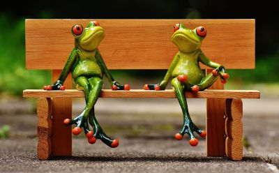 two frogs sitting on a bench