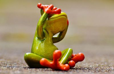 toy frog covering eyes