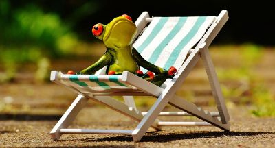 frog sitted on a beach chair