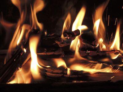 logs burning on campfire