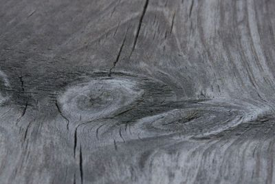 dry cracks in wood