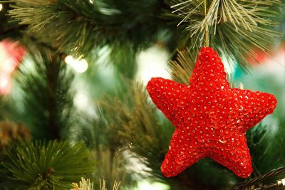 red star ornament on tree