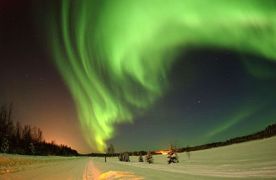 aurora lights in the sky