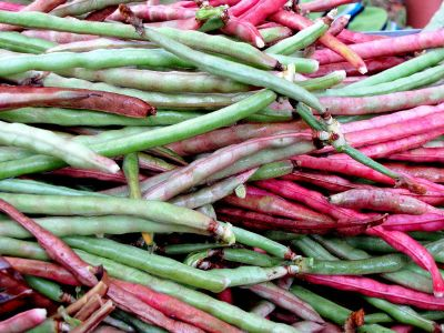 fresh red and green beans