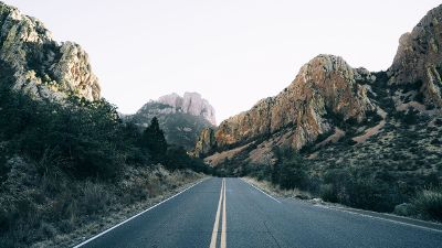 empty road with trees and rocks