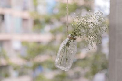 flowers in bottle
