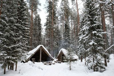 huts in the forest in winter