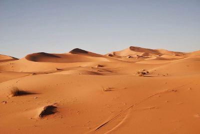 solitary desert