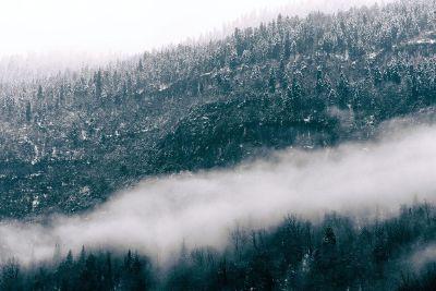 fog over the range