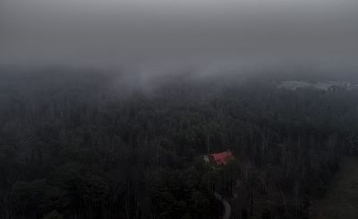 house on foggy wood
