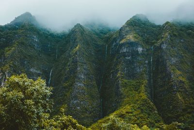 foggy green cliffs