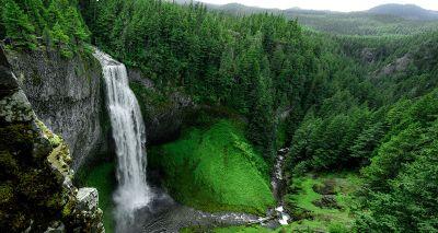 waterfall in green forrest
