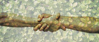 handshake overlay over leaves